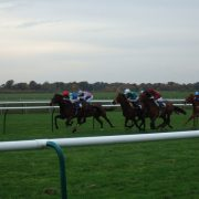 Newmarket Race Courses