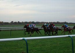 Newmarket Race Courses