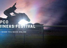 quipco guineas festival